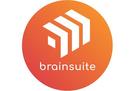 case_aimpower_brainsuite-logo