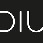 DIU_Sticky Logo